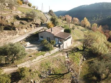 Maison en milieu de terrain 1 hectare