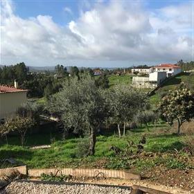 Quinta/Fazenda Central Portugal