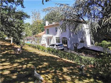 Spacious and secluded house with large pool and outhouse set in 8500m² of park land