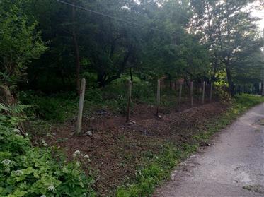 Урегулиран парцел 1168 м2 (12600 кв.м.), Зелин вила площ, Ботевград