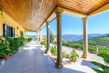 Fantástica Quinta no Douro, perto da Régua, com produção de vinho e azeite