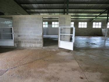Finca rural con instalaciones ecuestres