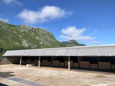 Domaine rural avec installations équestres