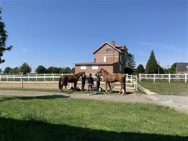 Centro equestre com casas residenciais