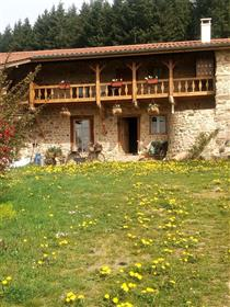 Tranquil stone renovated farmhouse amazing views