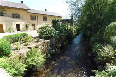 Exclusive Property not far from Basel