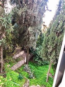 """דירה מרווחת, מוארת ושקטה, 85 מ""""ר, בירושלים"""
